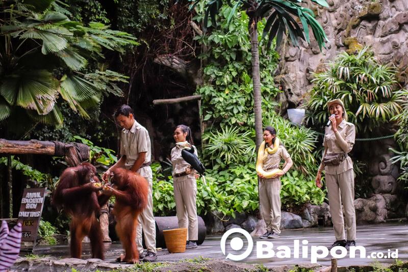 Animal Show Bali Safari